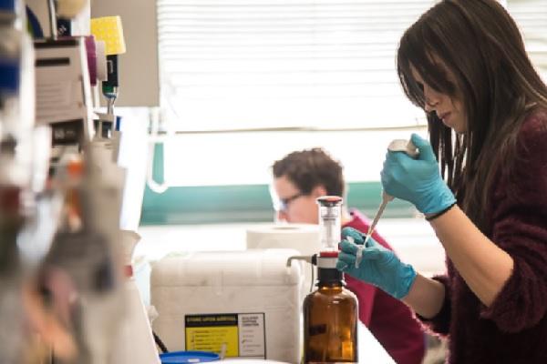 Leucemia mieloide aguda: cientistas identificam novos alvos para tratamentos