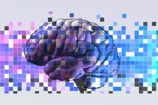 """Nos Países Baixos, 20 milhões de euros para combater o Alzheimer usando """"big data"""""""